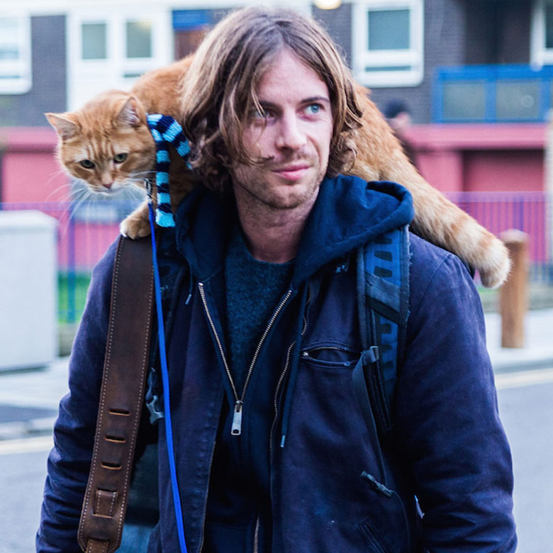 Street Cat Named Bob Luke Treadaway